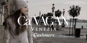 CaVAGAN – Winter 2016